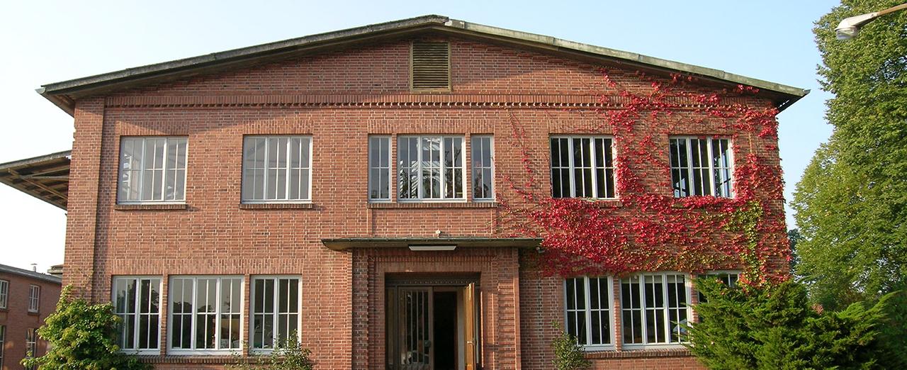 自然素材の家のイメージ写真