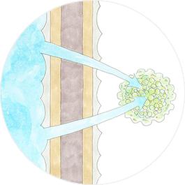 防カビなどの強い殺菌性で健康な住まいに イメージイラスト