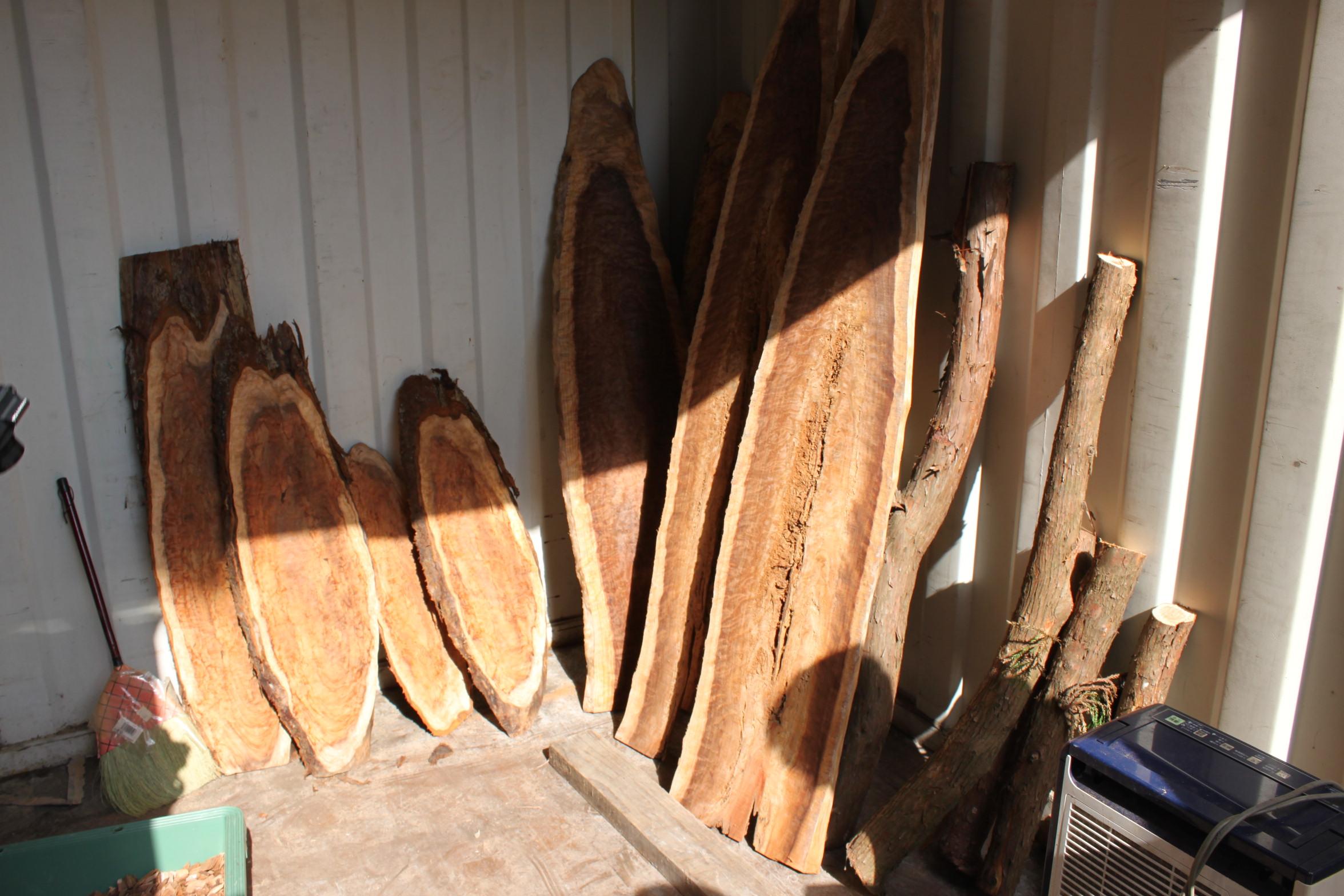 製材後丸太杉